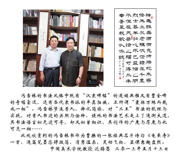 中国美术学院沈赐恩教授评价冯雪林书法