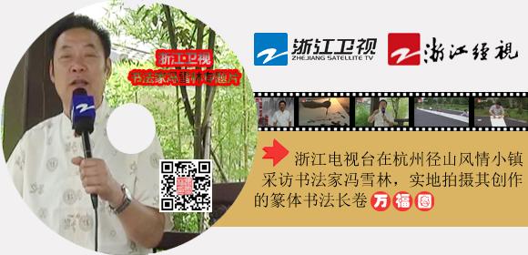浙江电视台拍摄书法家冯雪林专题片