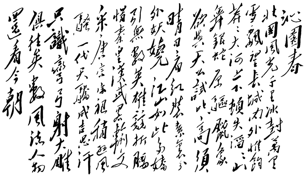 毛体《沁园春·雪》书法作品欣赏