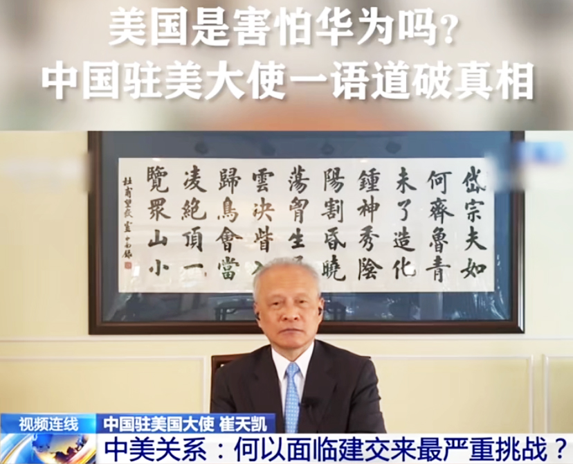 中国驻美大使馆悬挂书法字画——杜甫《望岳》